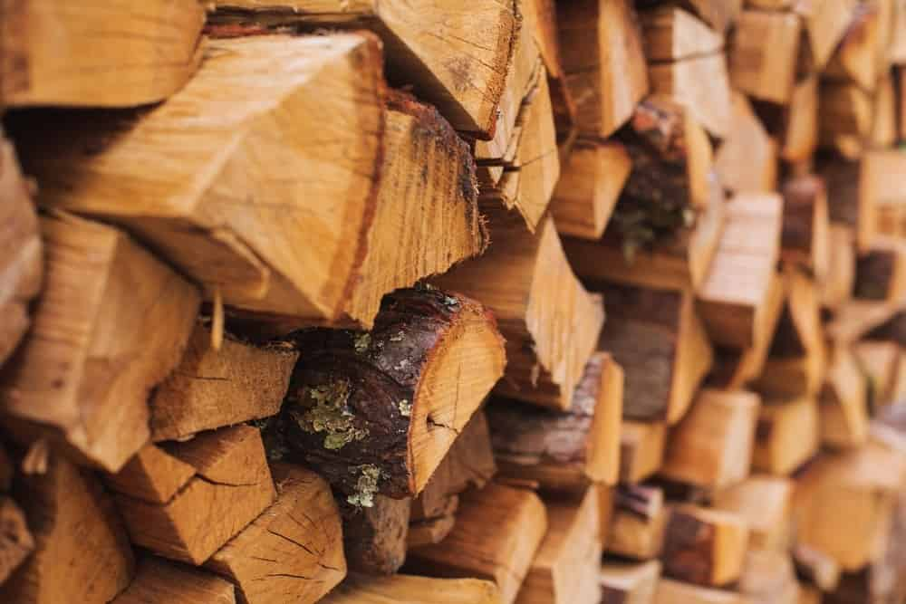 Best Time To Cut Firewood